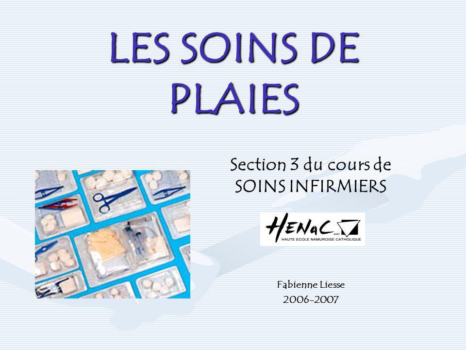 Section 3 du cours de SOINS INFIRMIERS Fabienne Liesse 2006-2007
