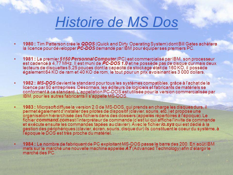 Histoire de MS Dos