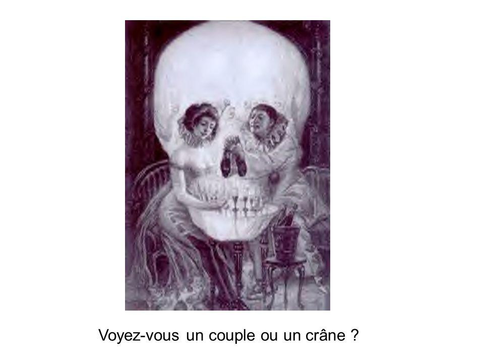 Voyez-vous un couple ou un crâne