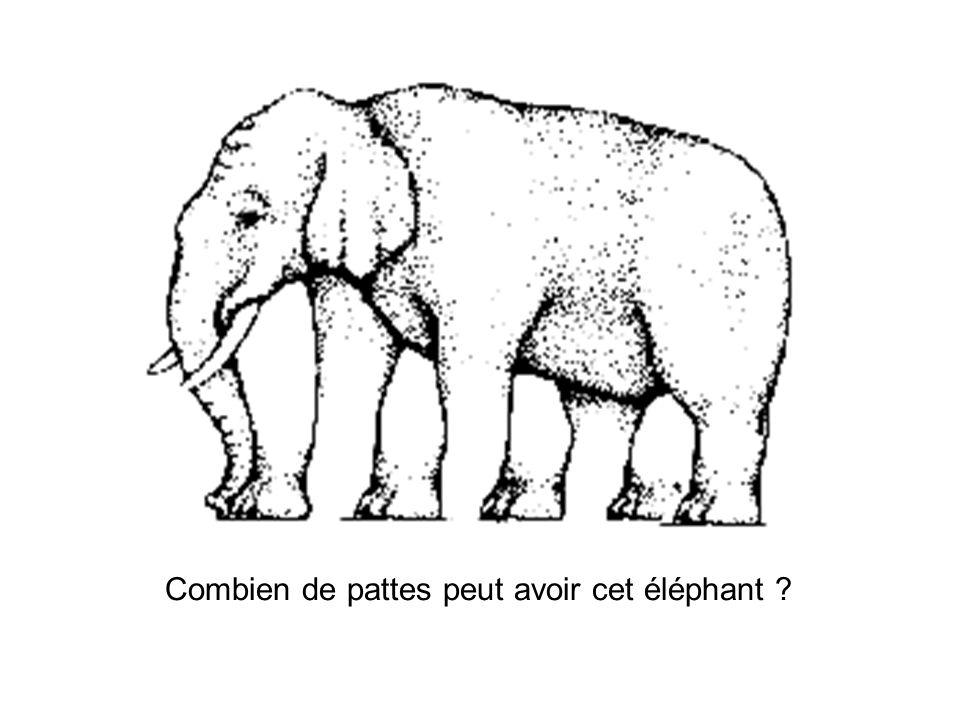 Combien de pattes peut avoir cet éléphant