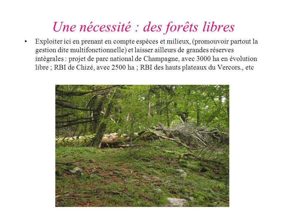 Une nécessité : des forêts libres