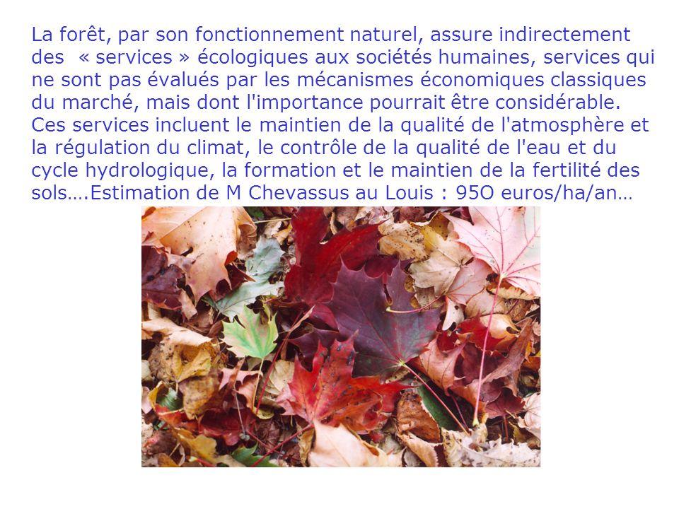 La forêt, par son fonctionnement naturel, assure indirectement des « services » écologiques aux sociétés humaines, services qui ne sont pas évalués par les mécanismes économiques classiques du marché, mais dont l importance pourrait être considérable.