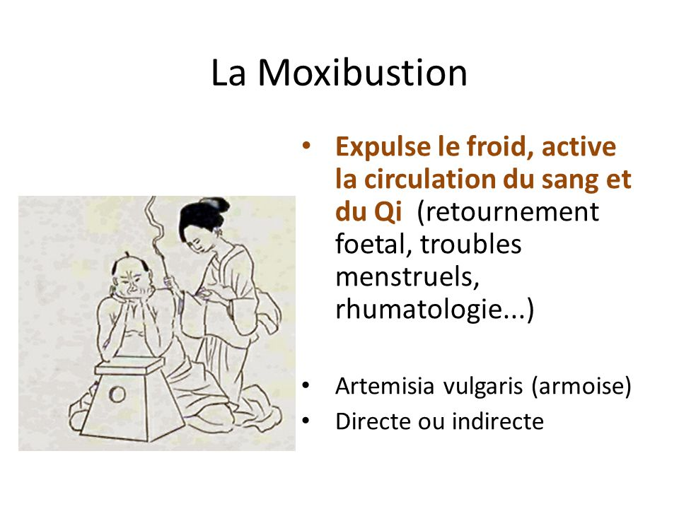 La Moxibustion Expulse le froid, active la circulation du sang et du Qi (retournement foetal, troubles menstruels, rhumatologie...)