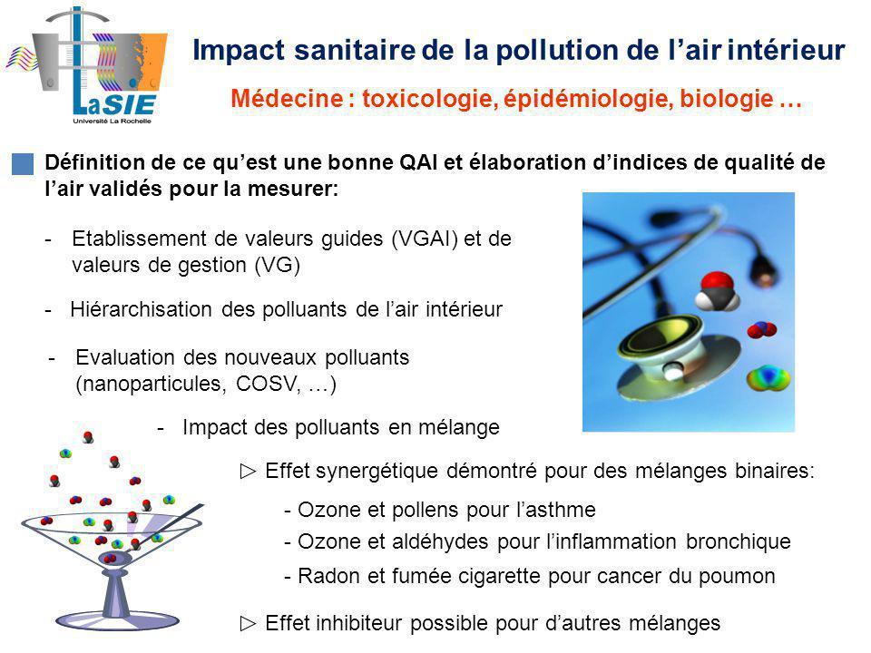 Impact sanitaire de la pollution de l'air intérieur
