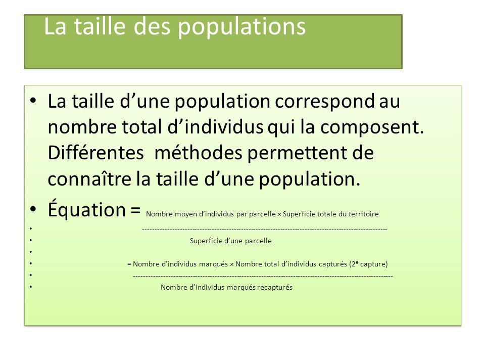 La taille des populations