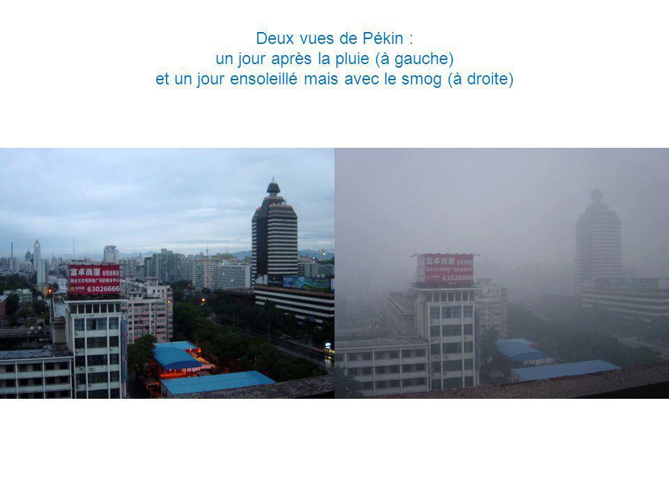 un jour après la pluie (à gauche)
