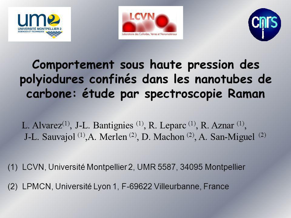 Comportement sous haute pression des polyiodures confinés dans les nanotubes de carbone: étude par spectroscopie Raman