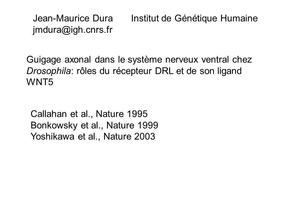Jean-Maurice Dura Institut de Génétique Humaine