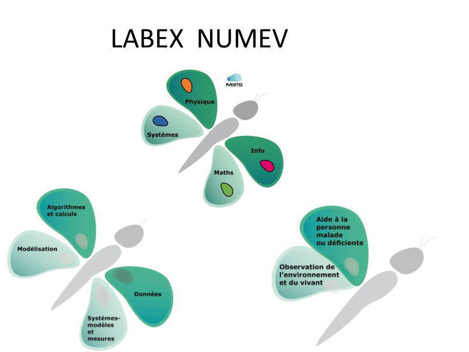 LABEX NUMEV