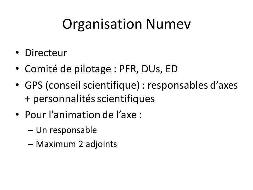 Organisation Numev Directeur Comité de pilotage : PFR, DUs, ED