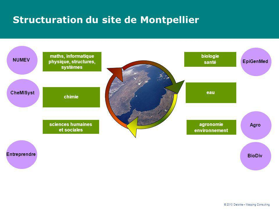 Structuration du site de Montpellier