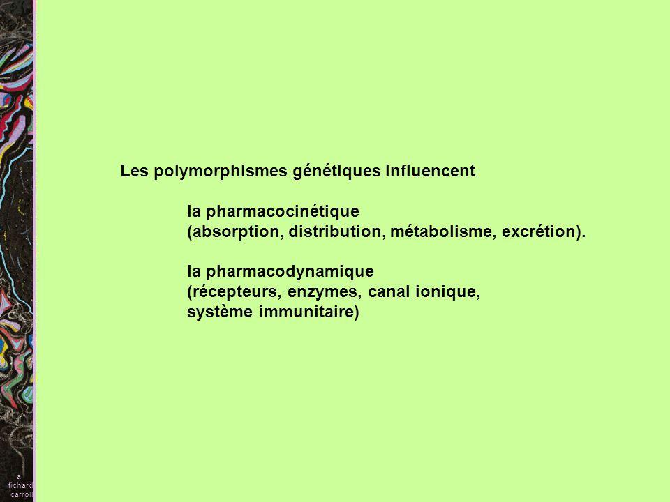 Les polymorphismes génétiques influencent la pharmacocinétique