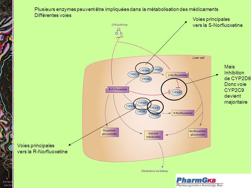 vers la S-Norfluoxetine