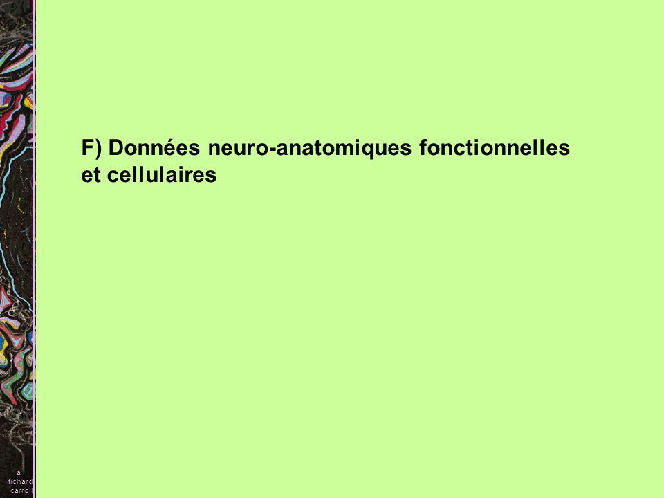 F) Données neuro-anatomiques fonctionnelles et cellulaires