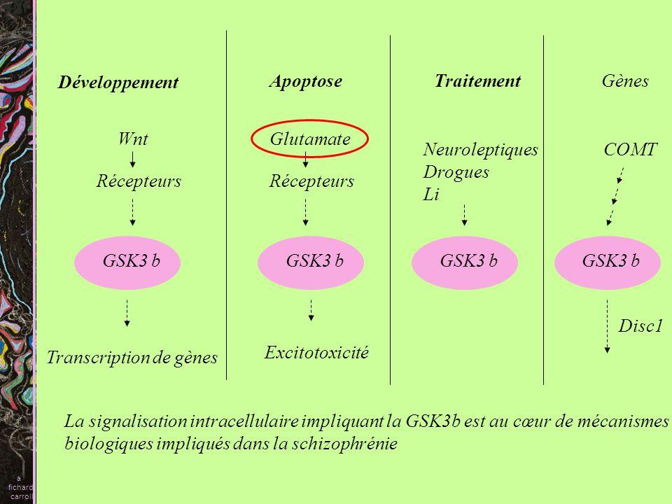 Transcription de gènes