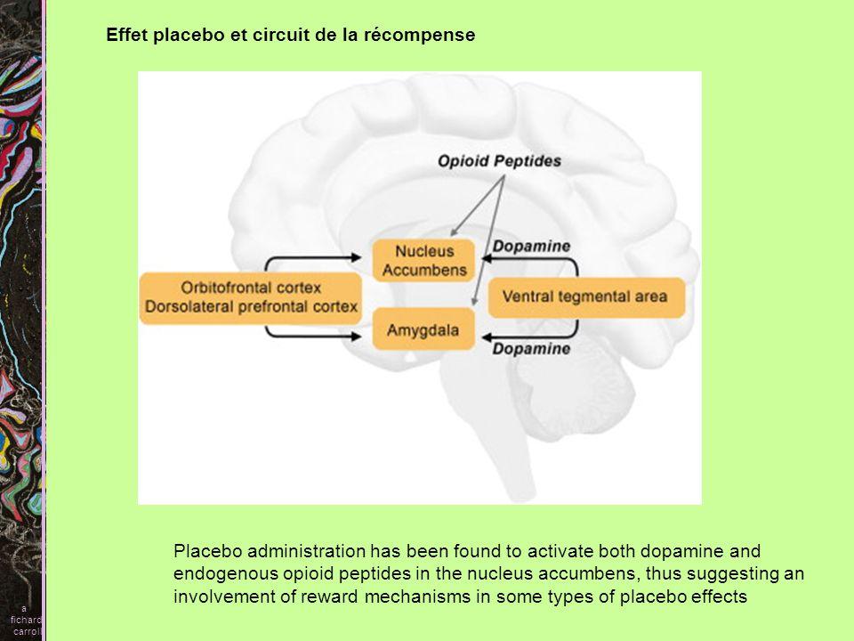 Effet placebo et circuit de la récompense