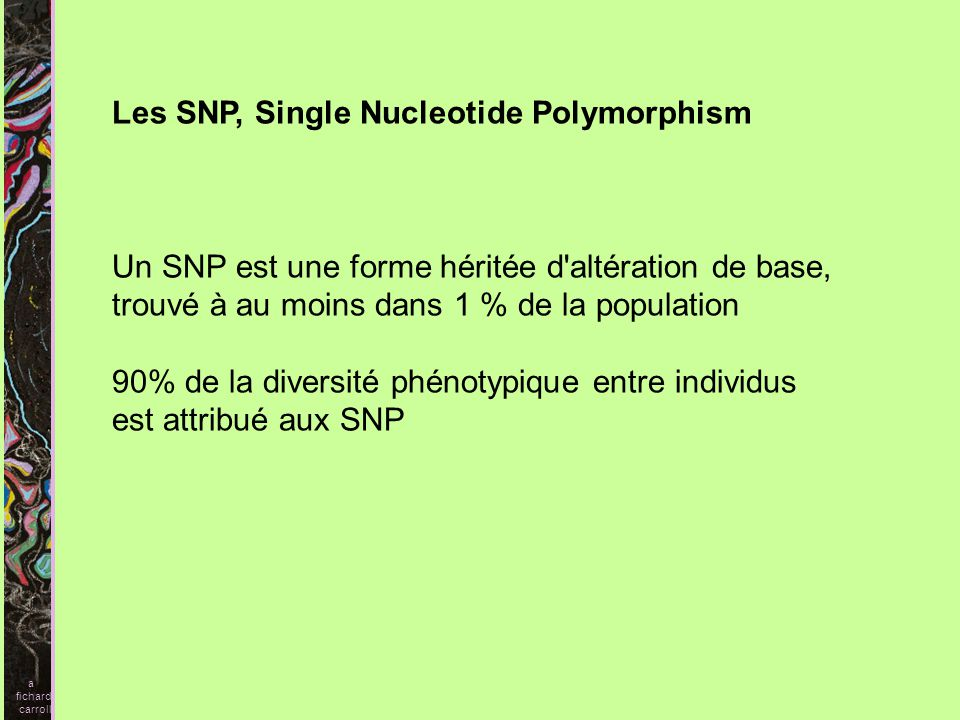 Les SNP, Single Nucleotide Polymorphism