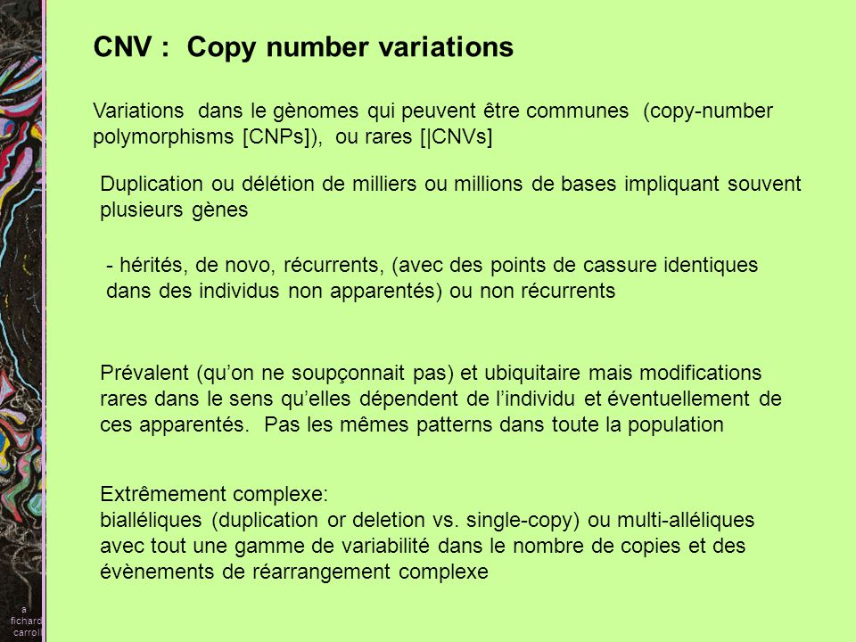 CNV : Copy number variations