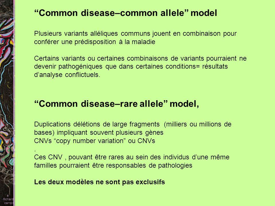 Common disease–common allele model