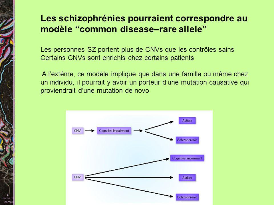 Les schizophrénies pourraient correspondre au modèle common disease–rare allele