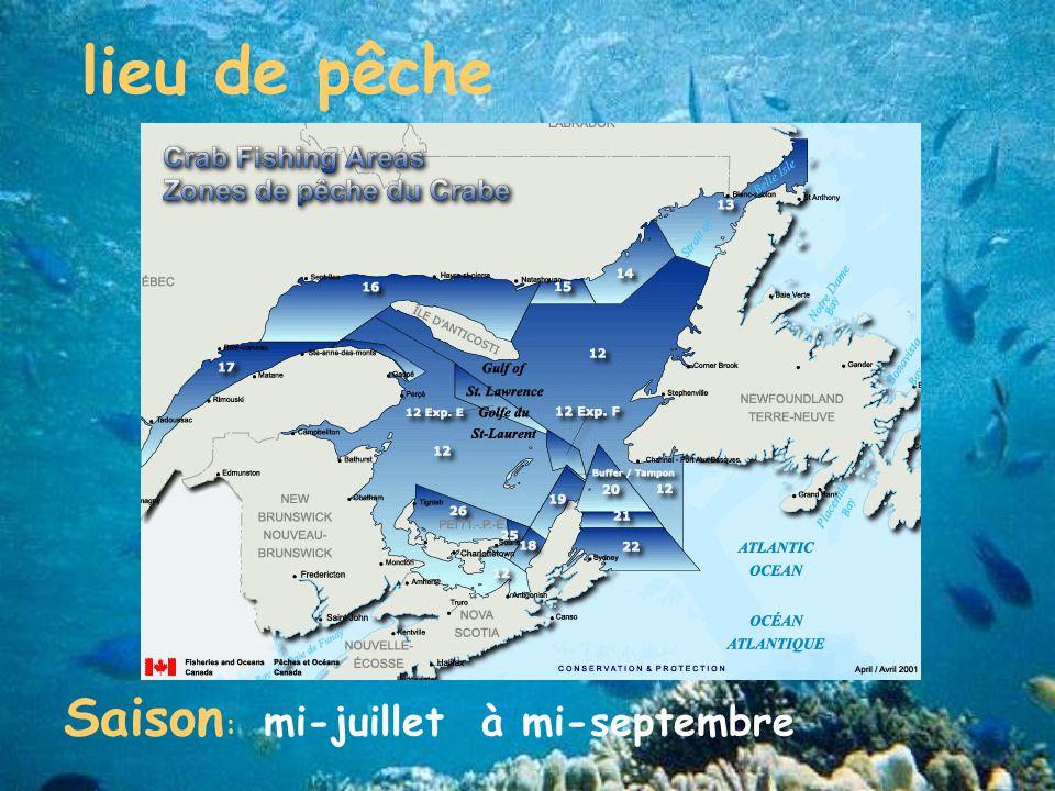 lieu de pêche Saison: mi-juillet à mi-septembre