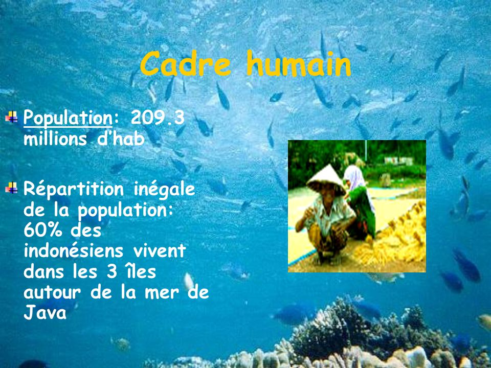 Cadre humain Population: 209.3 millions d'hab