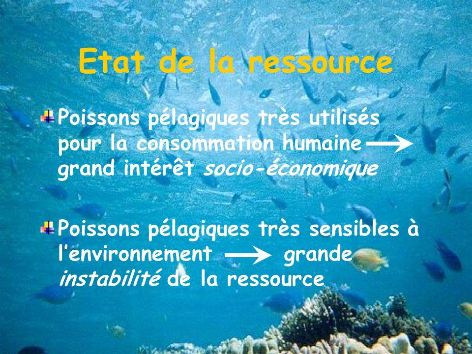 Etat de la ressource Poissons pélagiques très utilisés pour la consommation humaine grand intérêt socio-économique.