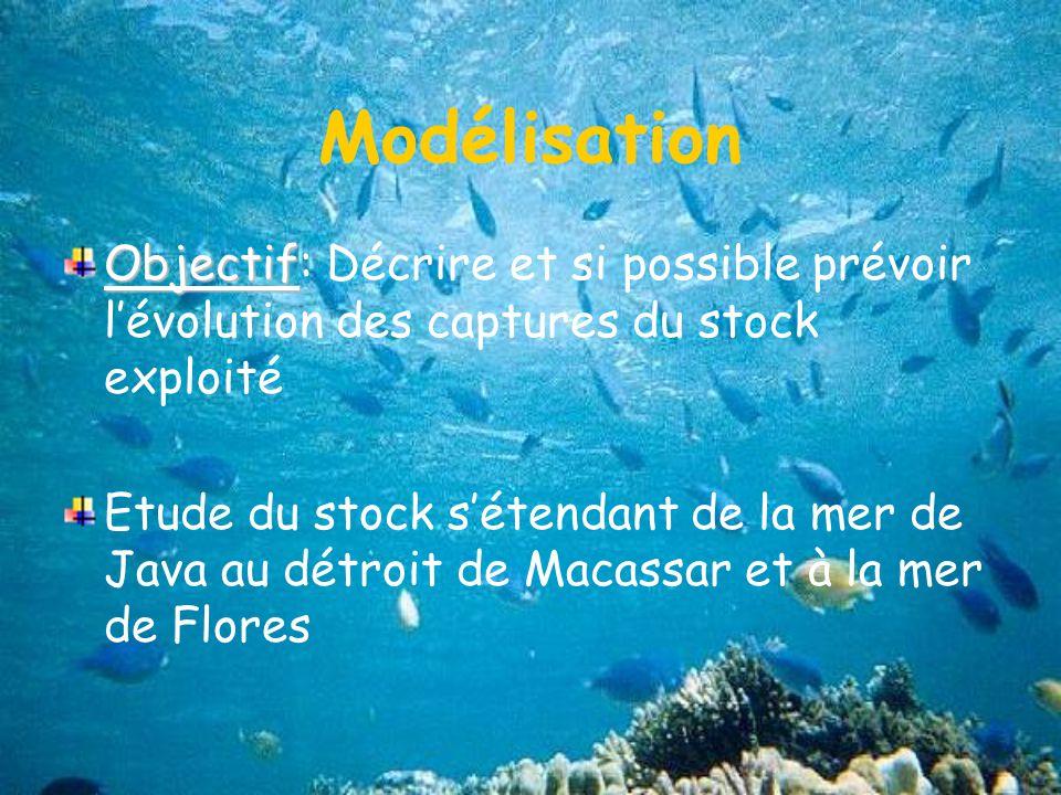 Modélisation Objectif: Décrire et si possible prévoir l'évolution des captures du stock exploité.