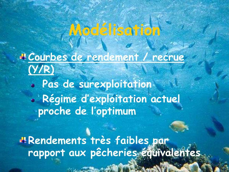 Modélisation Courbes de rendement / recrue (Y/R)