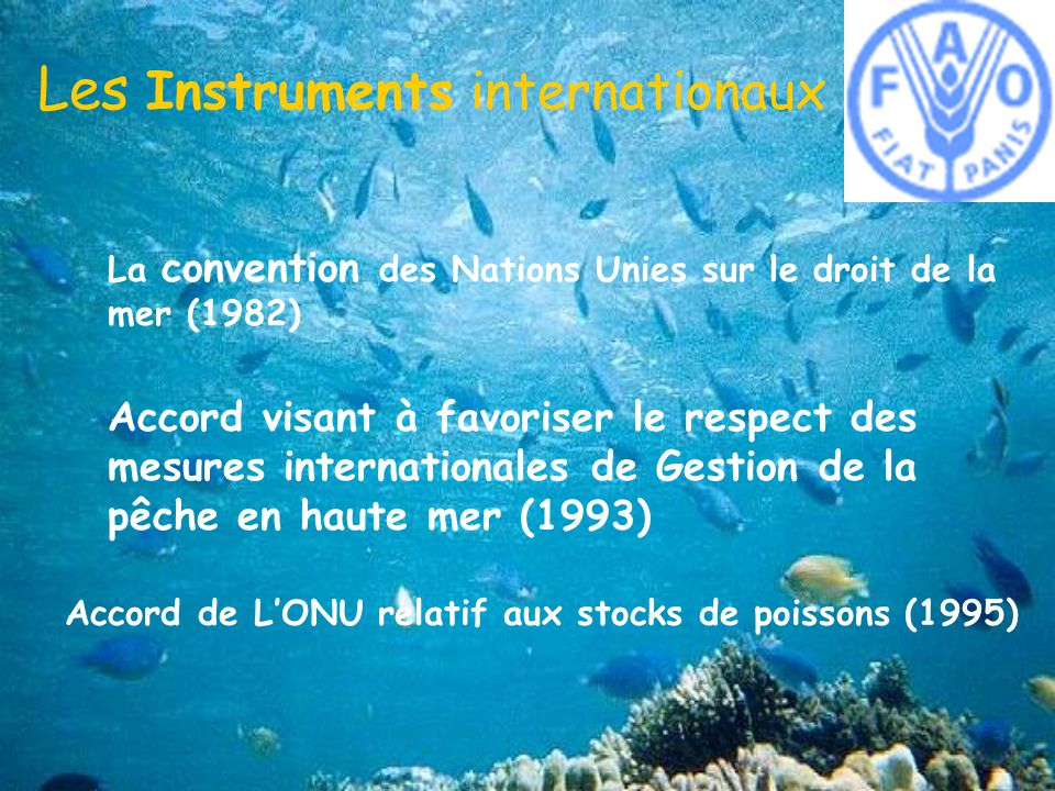 Les Instruments internationaux