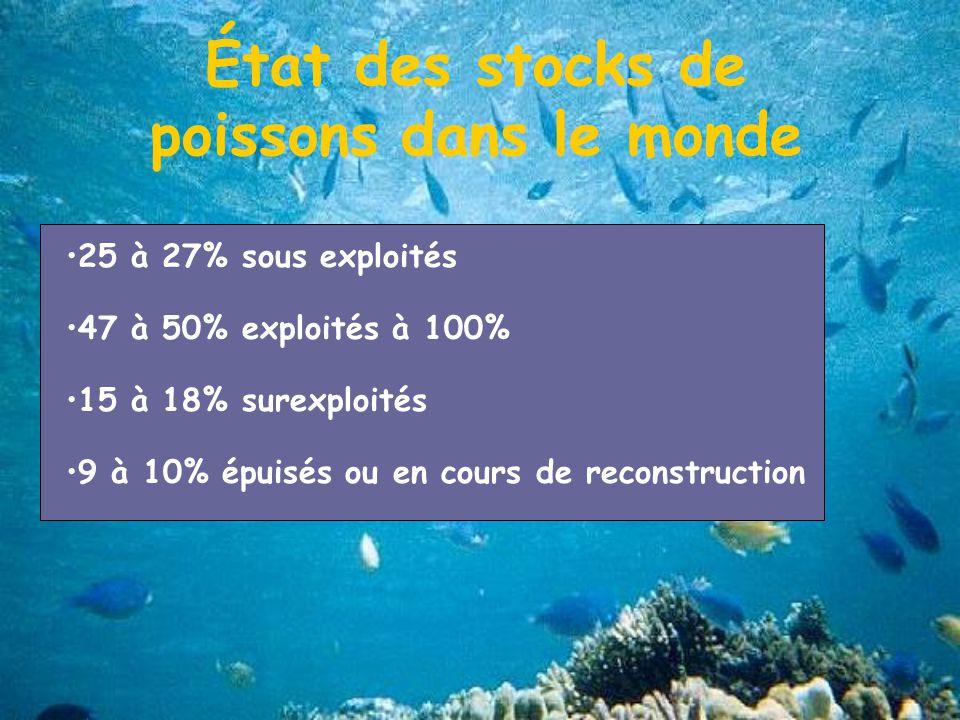 État des stocks de poissons dans le monde