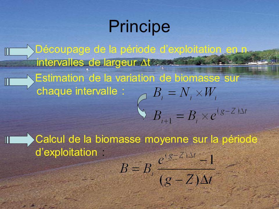 Principe Découpage de la période d'exploitation en n intervalles de largeur ∆t. Estimation de la variation de biomasse sur chaque intervalle :