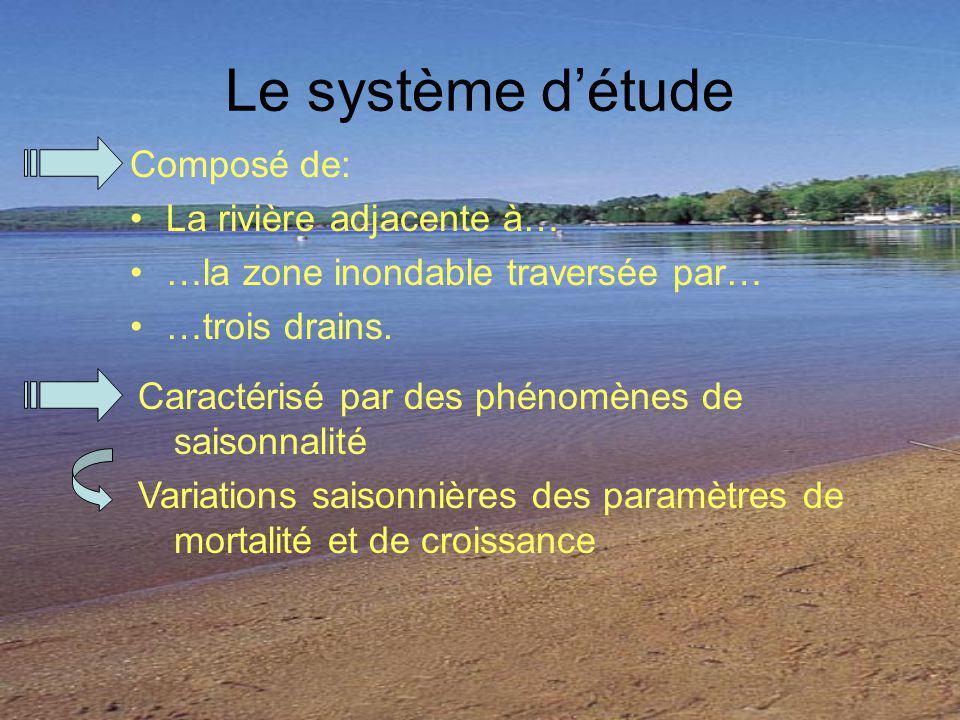 Le système d'étude Composé de: La rivière adjacente à…