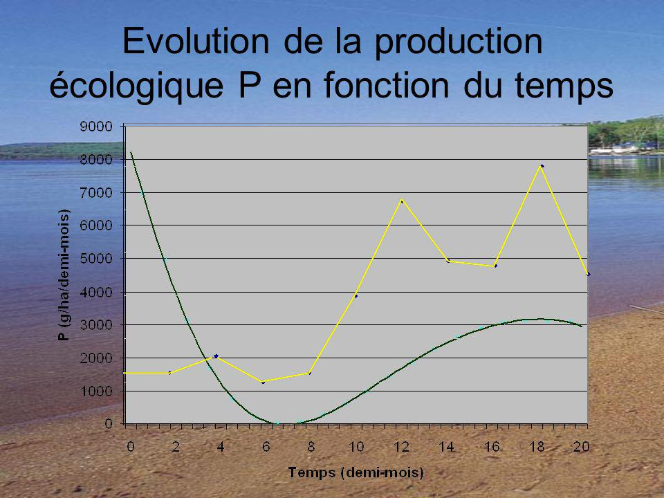 Evolution de la production écologique P en fonction du temps