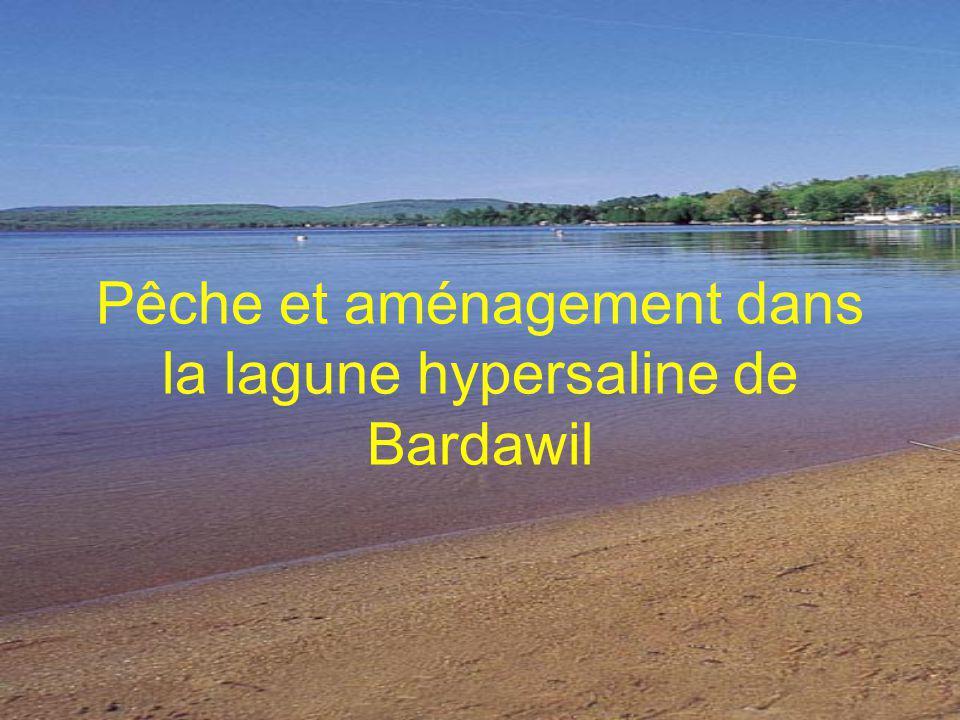Pêche et aménagement dans la lagune hypersaline de Bardawil