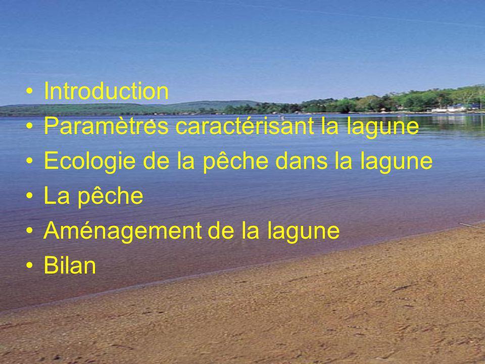 Introduction Paramètres caractérisant la lagune. Ecologie de la pêche dans la lagune. La pêche. Aménagement de la lagune.