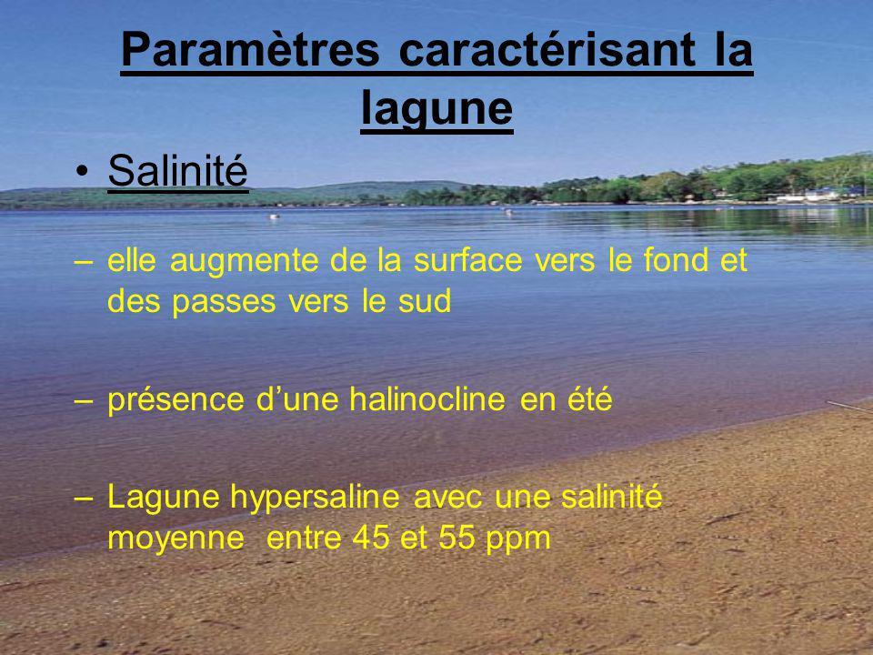 Paramètres caractérisant la lagune
