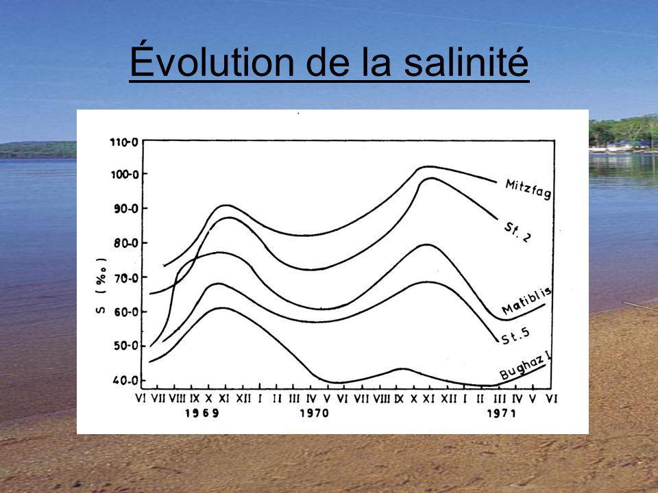 Évolution de la salinité
