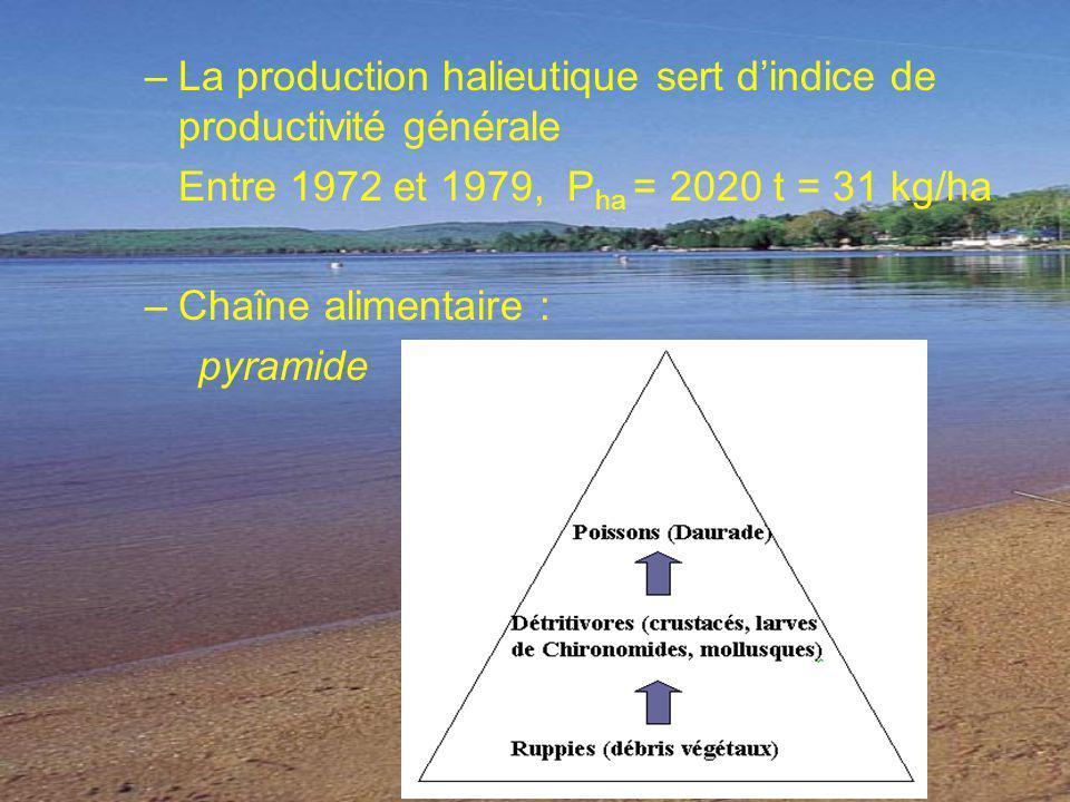 La production halieutique sert d'indice de productivité générale