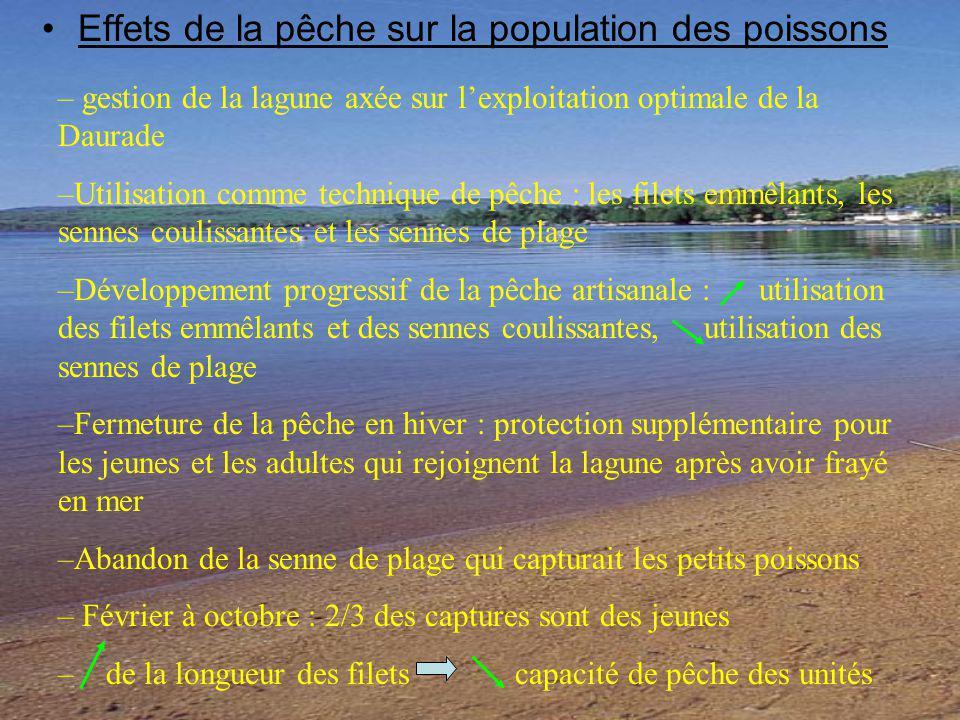 Effets de la pêche sur la population des poissons