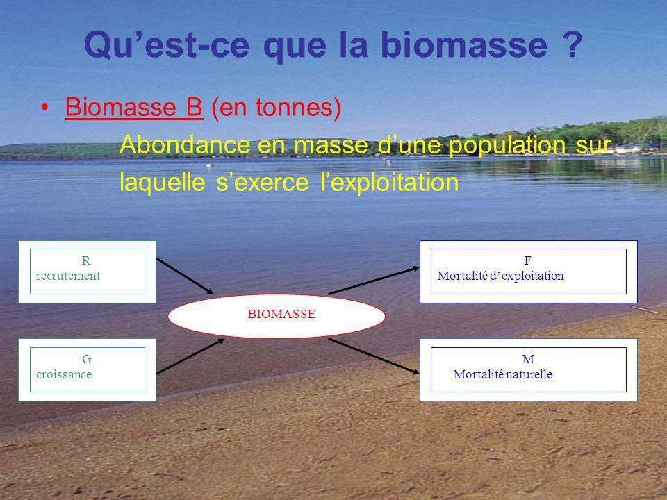 Qu'est-ce que la biomasse