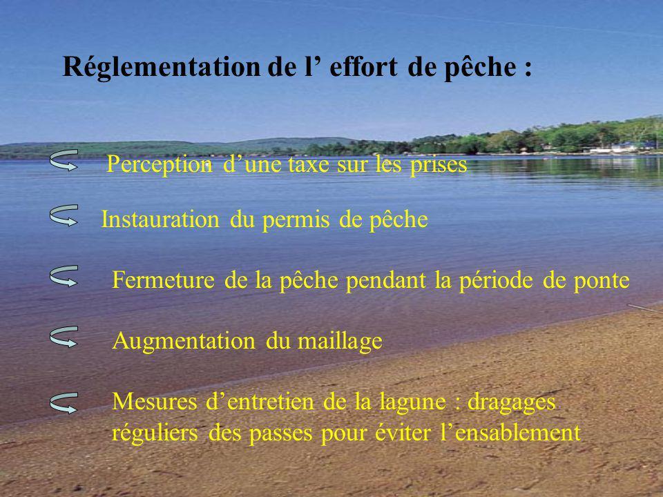 Réglementation de l' effort de pêche :