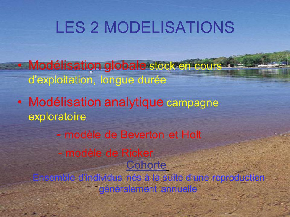 LES 2 MODELISATIONS Modélisation globale stock en cours d'exploitation, longue durée. Modélisation analytique campagne exploratoire.