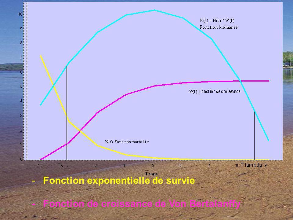 Fonction exponentielle de survie