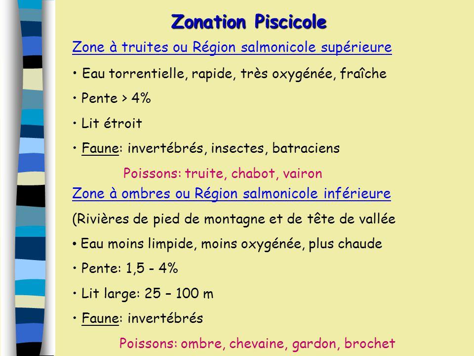 Zonation Piscicole Zone à truites ou Région salmonicole supérieure