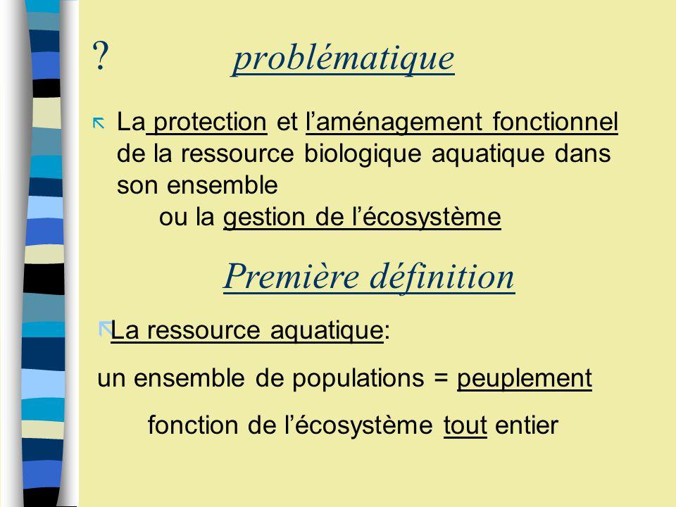 problématique Première définition