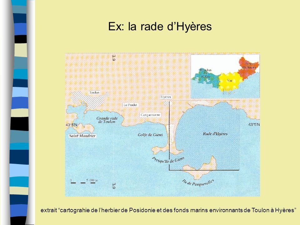 Ex: la rade d'Hyères extrait cartograhie de l'herbier de Posidonie et des fonds marins environnants de Toulon à Hyères