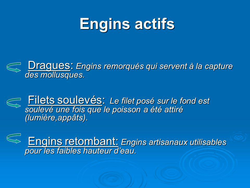 Engins actifs Dragues: Engins remorqués qui servent à la capture des mollusques.