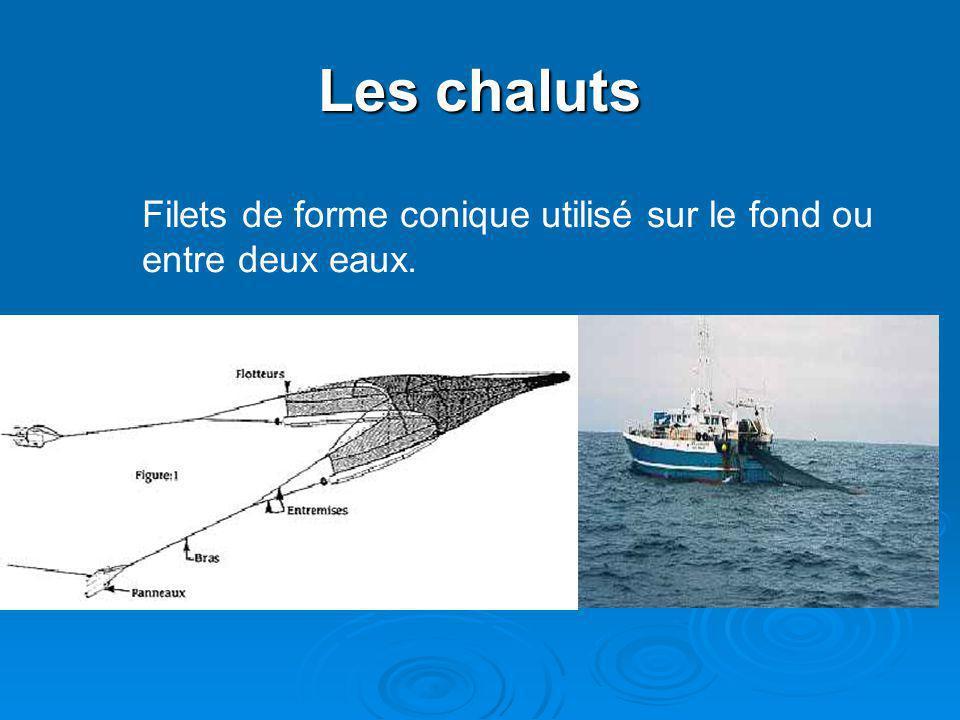 Les chaluts Filets de forme conique utilisé sur le fond ou entre deux eaux.
