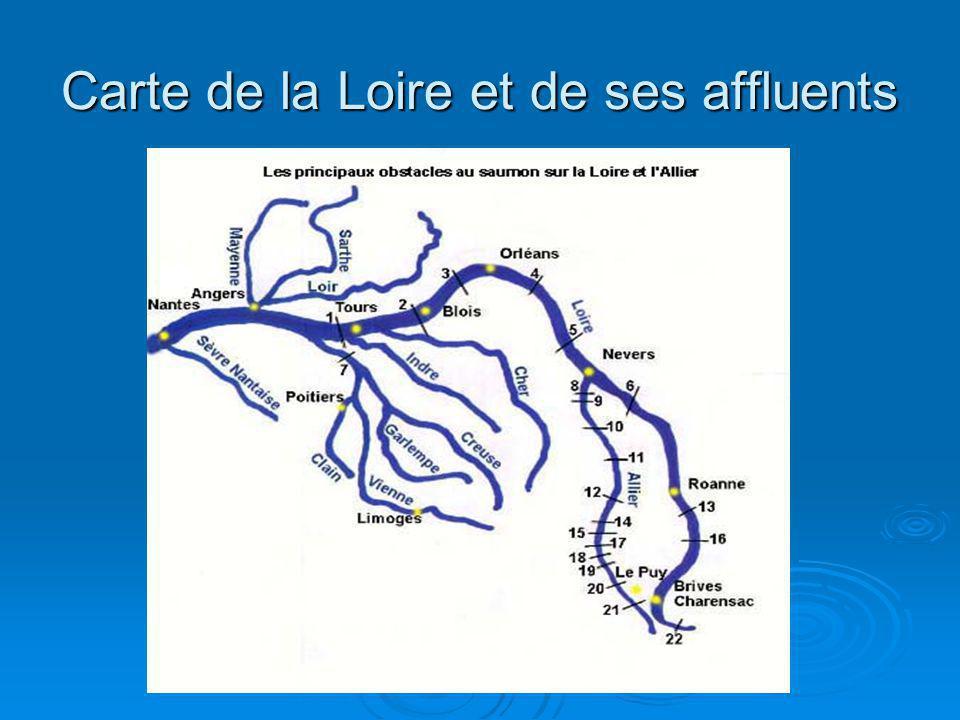 Carte de la Loire et de ses affluents